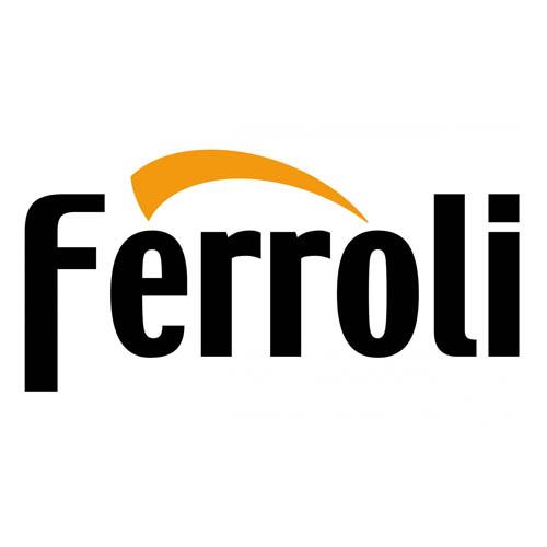 Ferroli Spares